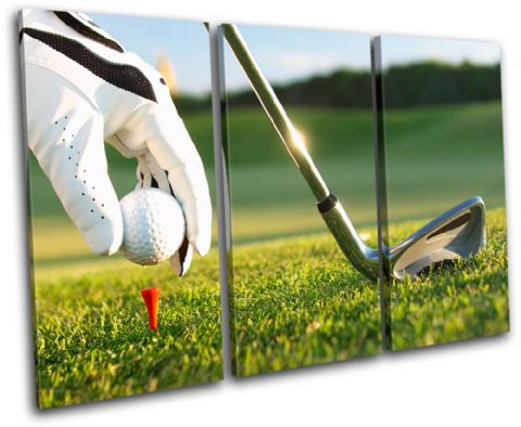 Golf Tee Shot Sports - 13-1821(00B)-TR32-LO